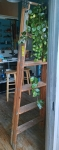 6ft Archibold Step Ladder