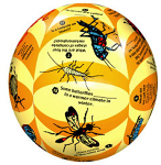 Clever Catch- Elementary Science Insects