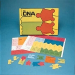 DNA Puzzle Kit