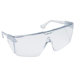Clear Plastic Eyeglass Protectors