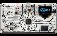 BrainPad (16 Kits)