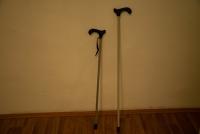 Vycházková hůl / Walking canes