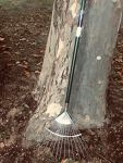 Lawn Rake (stainless steel)