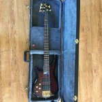 Diodati 5-String Left-handed Electric Bass