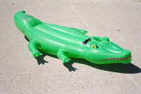Crocodile à chevaucher