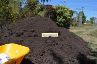 Bulk - Compost
