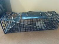 Humane Squirrel Cage Trap