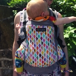 Isara Baby Carrier Joy