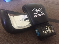 Boxing Gloves - Sting - One pair Black