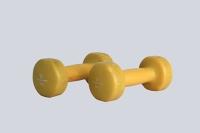 Weights - 2 Kg Dumbells
