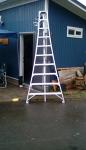 10' Orchard Ladder