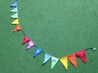 Birthday Bunting (Bunting #15)