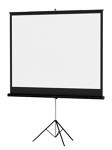 "Da-Lite 110"" Matte White Projection Screen"