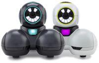 Cue Robots Age 11+ class set of 10