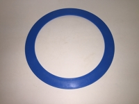 Blue Frisbee ring