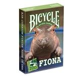 Cincinnati Zoo - Fiona Cards - Bicycle
