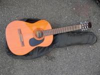 Kytara Ariana / Guitar Ariana