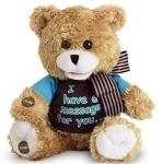 Record-A-Message Bear