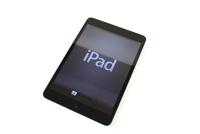 *iPad Mini