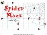 SpiderMaze
