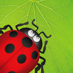 Ladybug Munch app