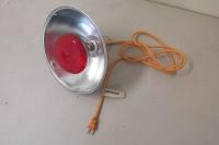 Heat Lamp #1