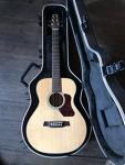Walden T550 Travel Guitar