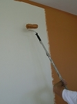 Paint Roller Extension Pole - 3 to 6ft