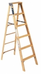 6 ft Ladder