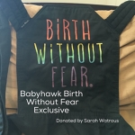 Babyhawk Meh Dai - Birth Without Fear