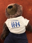 Paddington Demo Bear