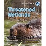 Threatened Wetlands