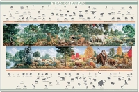 The Age of Mammals Poster