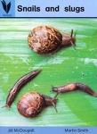 Snails and Slugs Book