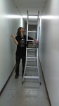 Step Ladder - 12ft