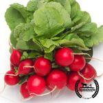 Vegetables: Spring Bundle