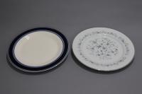 10 assorted dinner plates
